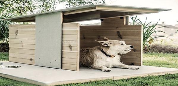 Nhà gỗ đơn giản cho chó