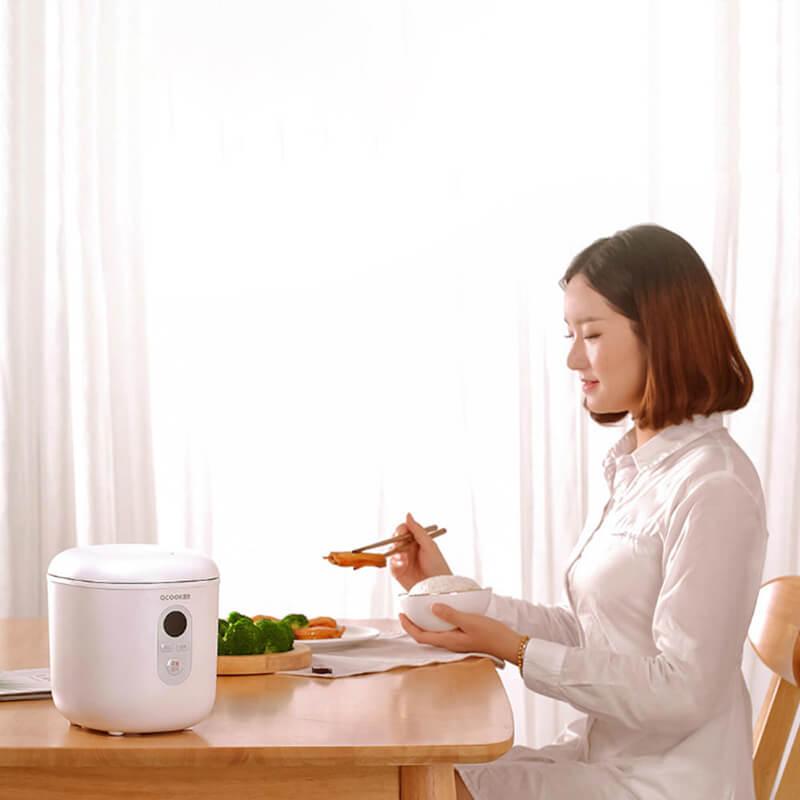 Có nên mua nồi cơm điện mini hay không?